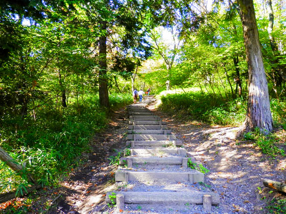 Steps that lead to the top of Mt. Sasao