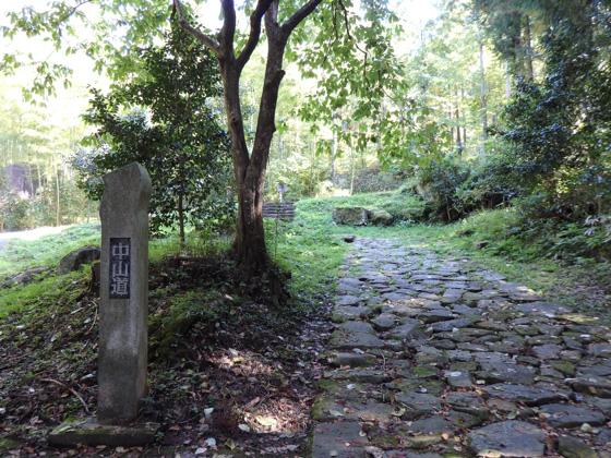 Ochiai-no Ishi-datami